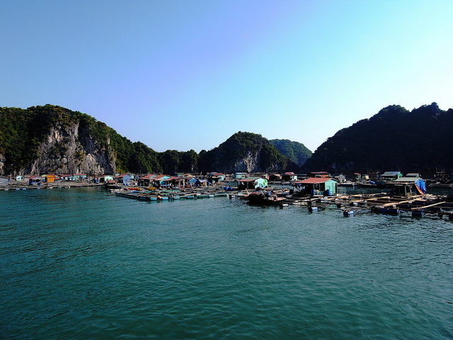 Floating fishing village in Ha Long Bay