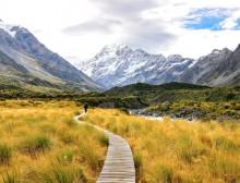 nz-best-trails