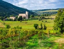 europe-wine-tours