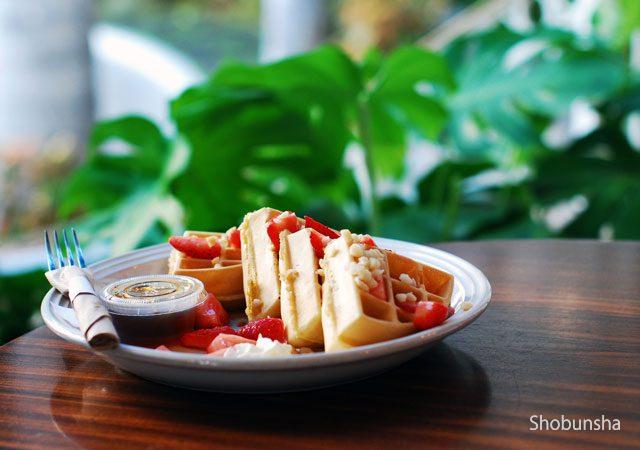 朝食ビュッフェが楽しめる ハワイ ホノルルのホテル5選 fish tips