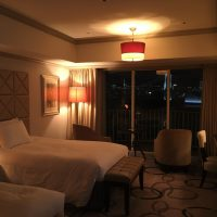 "Check it Out! ""Hilton Tokyo Odaiba"" Explicit Review"